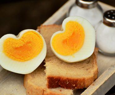 Æggekoger testoversigt – find den bedste æggekoger