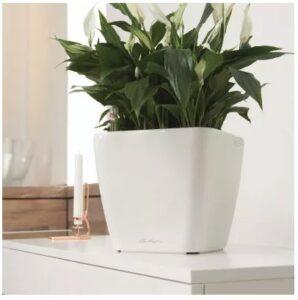 Lechuza Quadro LS Flower Pot 28x26cm