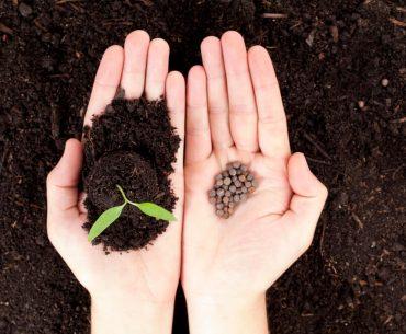 Find de rette plantesække til dine haveprojekter