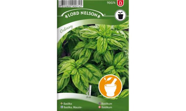 Basilikum – Smuk, lækker og tæt plante